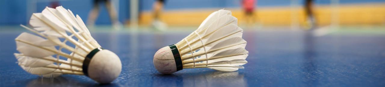 Castres Badminton Club 5