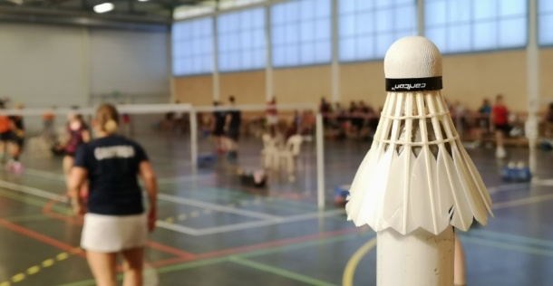 Premier stage de badminton adulte